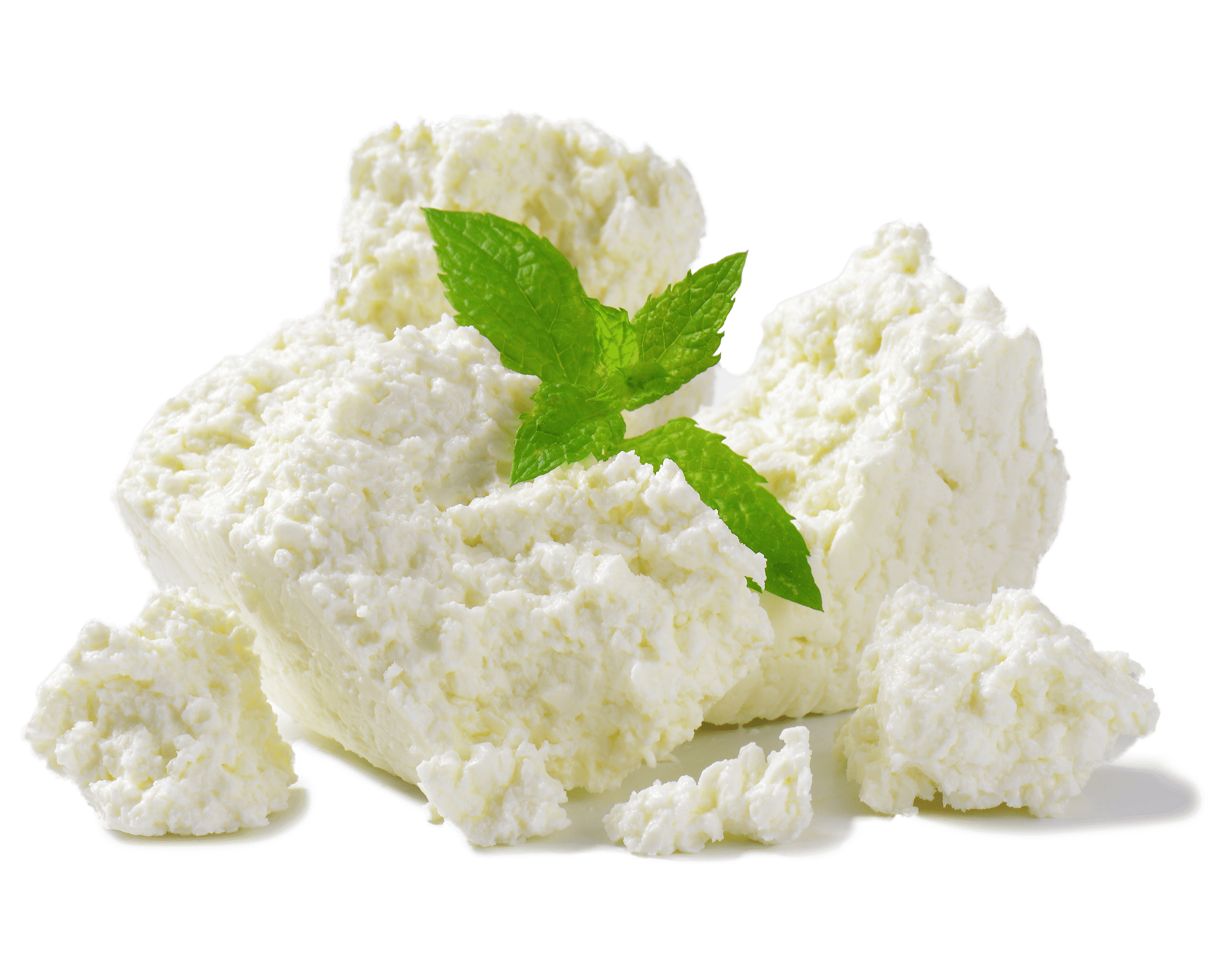 Ricotta cheese with mint leaves