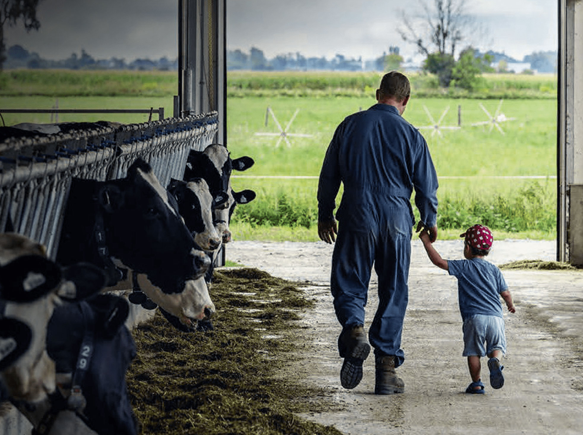 a farmer and a small child walk hand in hand through a barn